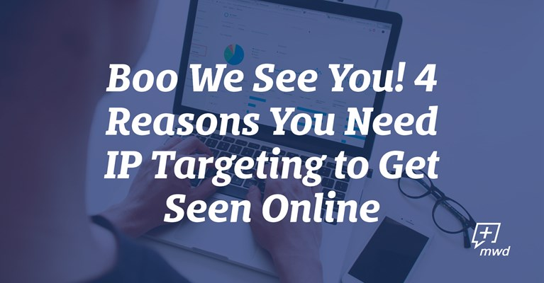 Boo We See You! 4 Reasons You Need IP Targeting to Get Seen Online