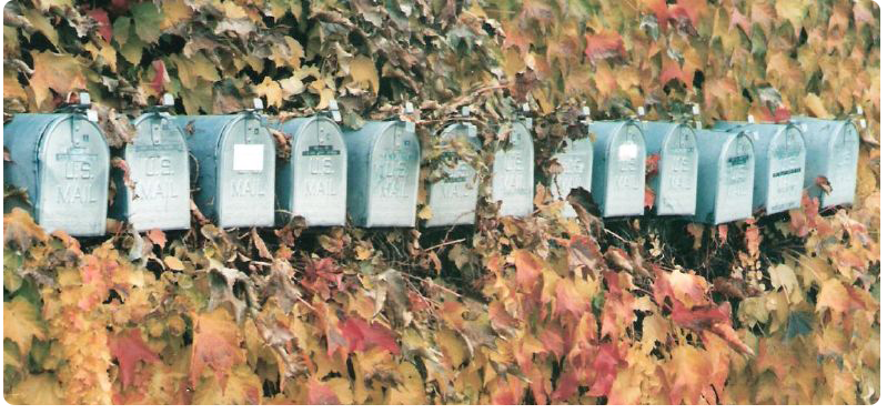 mail boxes in ivy
