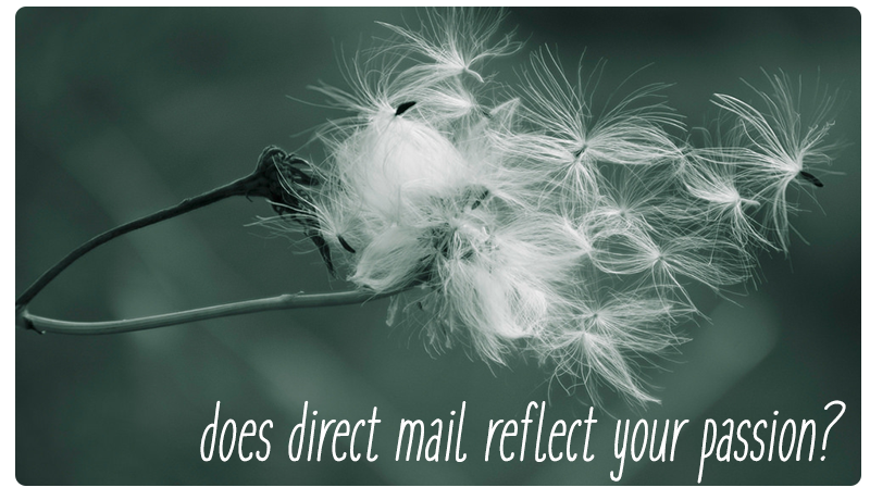direct mail nonprofit