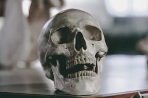 skull-2589974_640